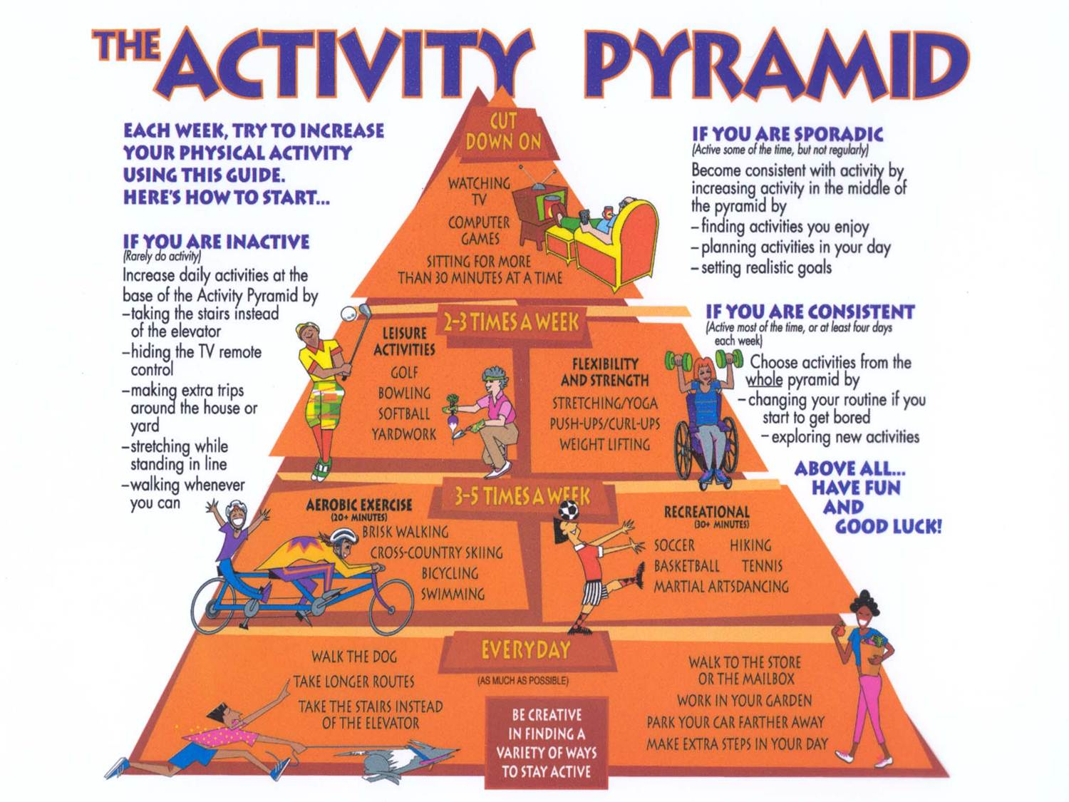 Physical Activity Facts